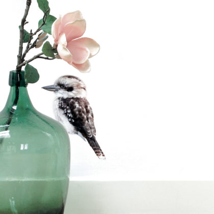 KEK Amsterdam kookaburra
