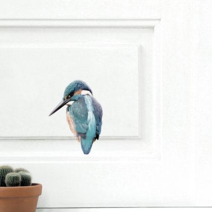 KEK Amsterdam ijsvogel