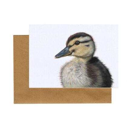 Kaart Wilde eend (pulletje)