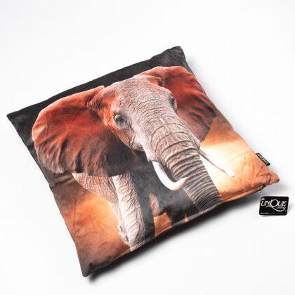 Kussen olifant