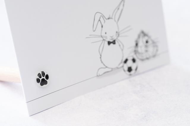 Kaartpin Sfeerfoto kattenpoot